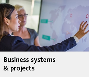 Business systems & projects