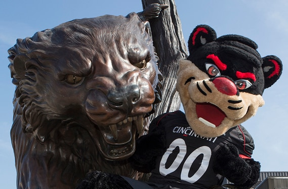 Bronze statue of UC Bearcat being hugged by Bearcat mascot